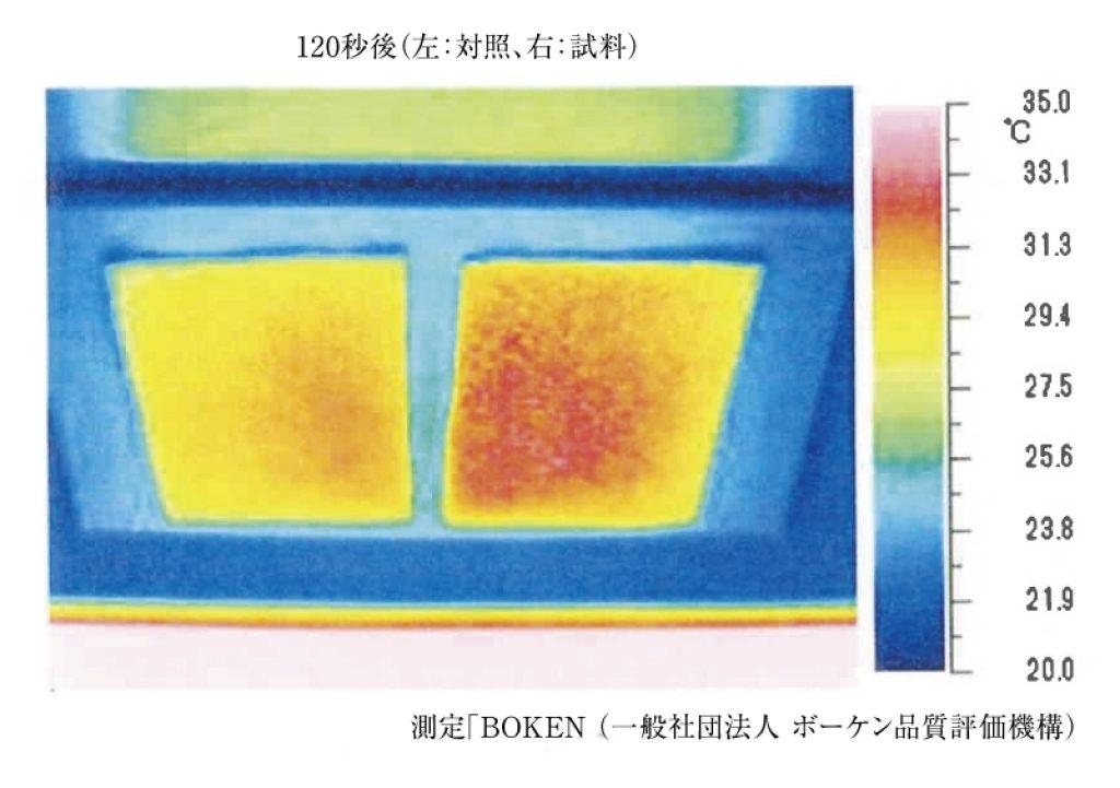 サーモグラフィーによる表面温度