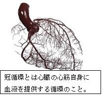 運動と血液循環 →心拍数があがり心臓に負担がかかる