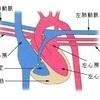 """コラム 心臓に負担をかけないリラックスによる血流促進""""体温コントロール術 その2"""""""